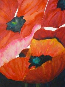 Poppies W/c $550